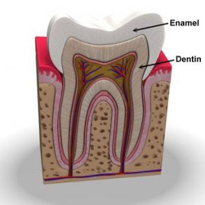 Sensitive teeth Oyster Bay NY